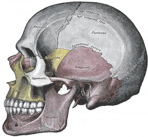 Temperomandibular Joint (TMJ) Pain