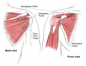 Rotator Cuff (RC) Tear